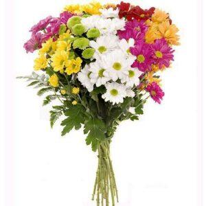 ramo-de-flores-multicolor-margaritas