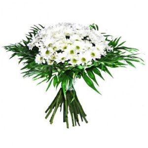 ramo de flores margaritas blancas