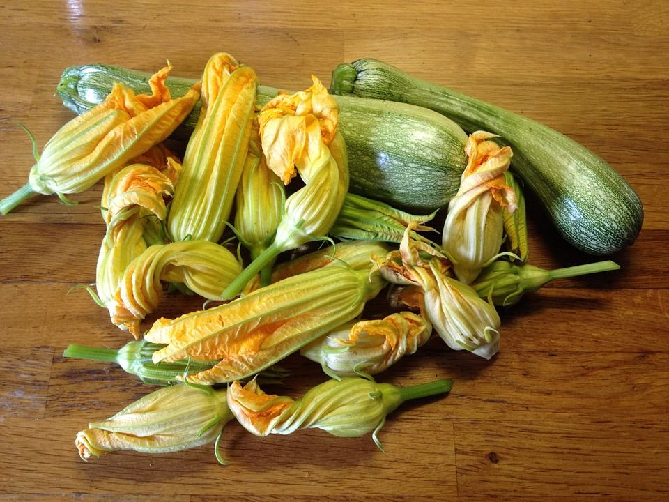 flores-de-calabacin