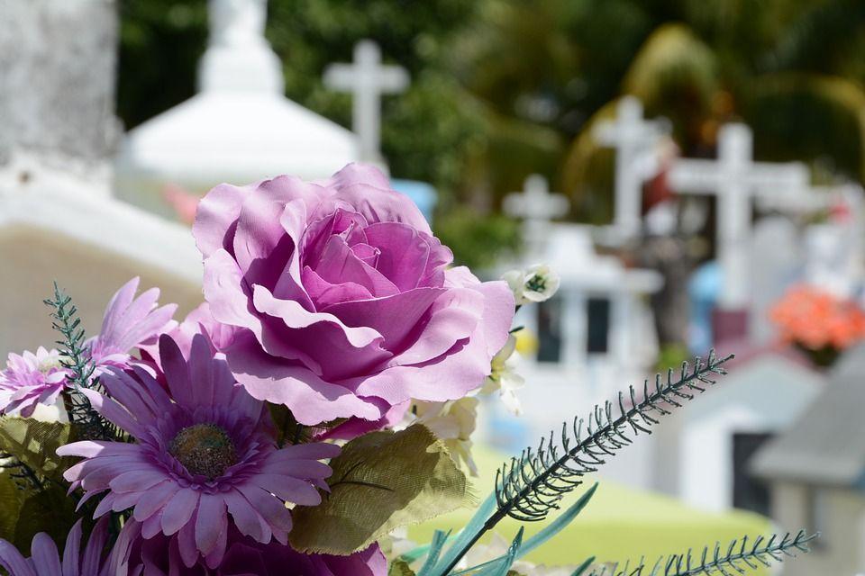Resultado de imagen de cementerio flores