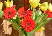 enviar flores al hospital