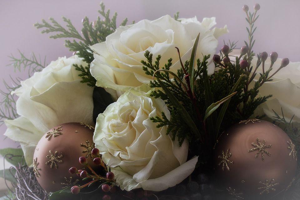 Descubre El Significado E Historia De Las Rosas Blancas