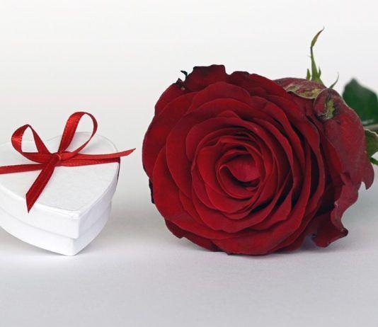 Elige el ramo de flores que regalarás en el día de la Virgen del Carmen