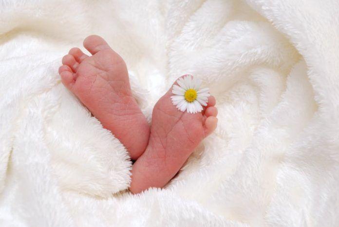 Envía flores a un recién nacido para darle la bienvenida