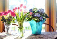 obsequiar flores