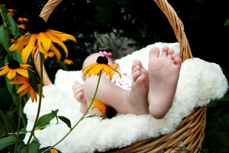 Flores para una madre primeriza