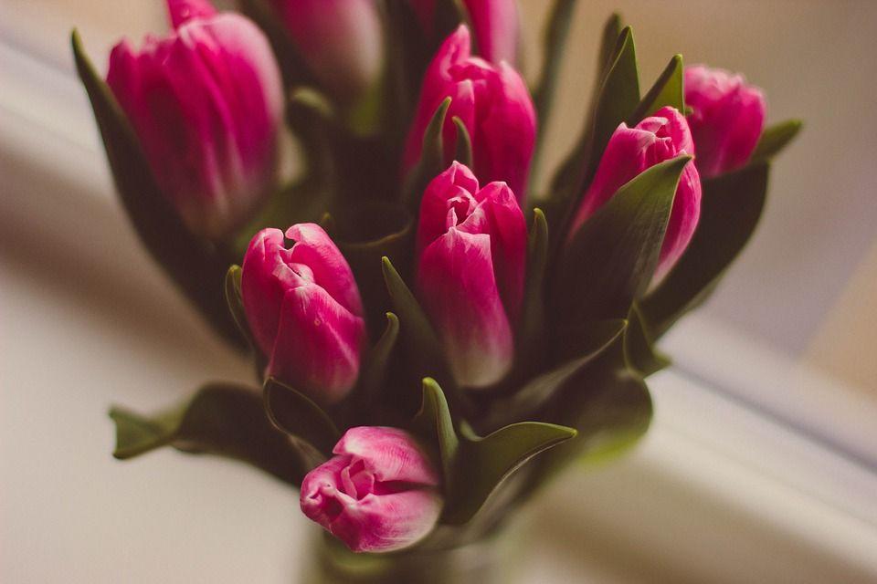 Descubre Los Mensajes Que Transmitimos Al Enviar Flores