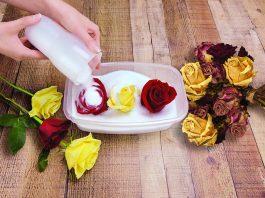 Preservar rosas gel de silice