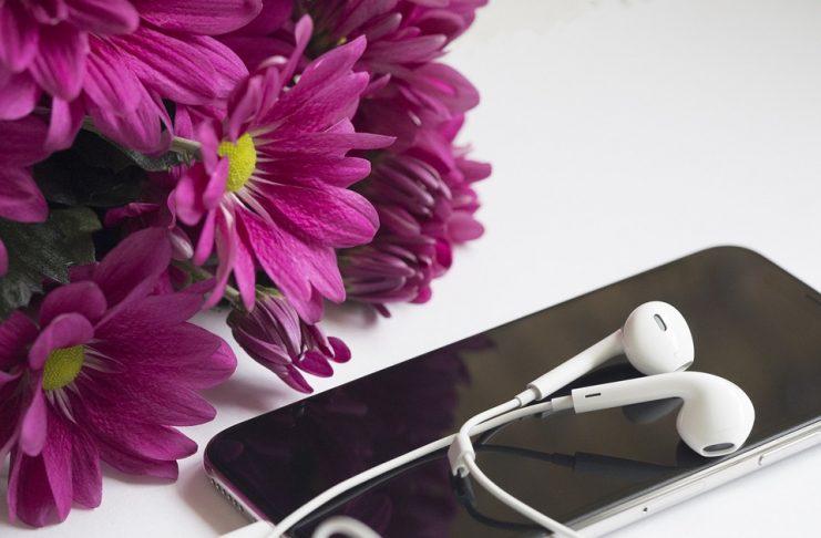 El efecto de la música en las plantas