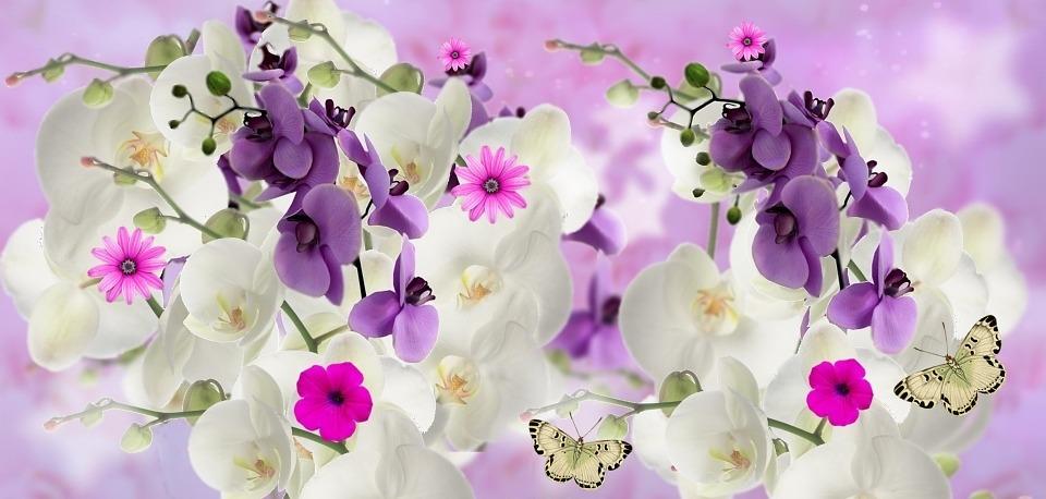 flores mitologicas