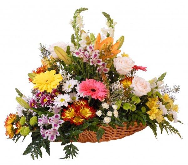 regalar cesta flores cumpleaños