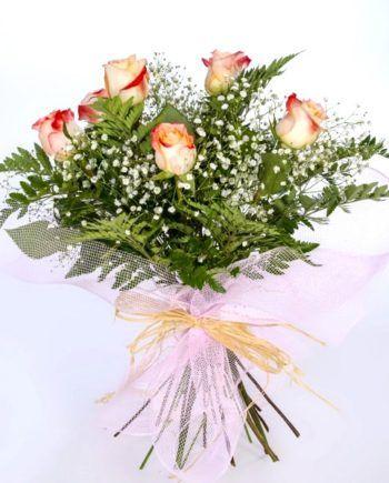 regalar 6 rosas bicolor
