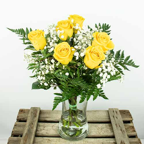 Enviar ramo 6 rosas color amarillo