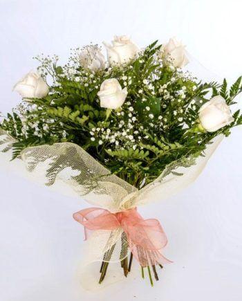 regalar 6 rosas blancas