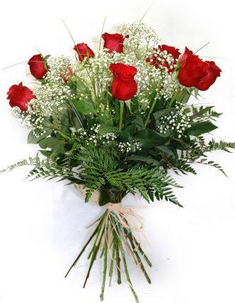 enviar hoy docena de rosas rojas